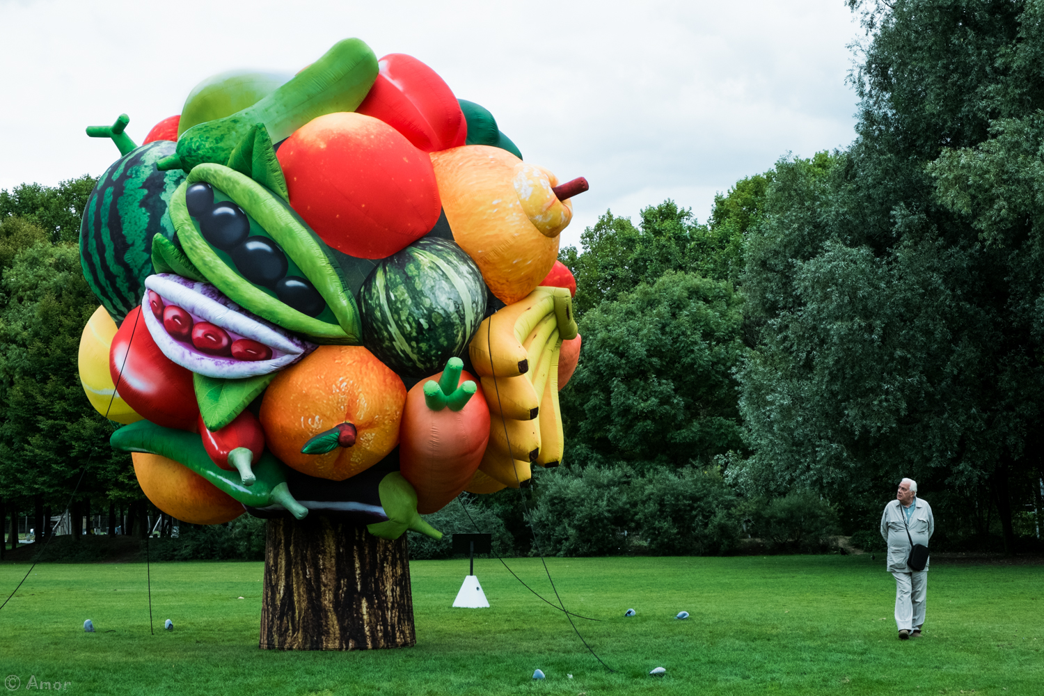 Choi Jeong Hwa Fruit Tree