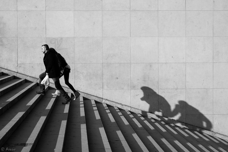La proie des ombres